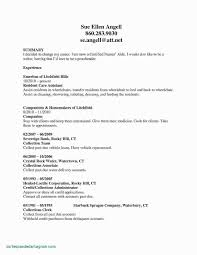Good Resume Headline Examples Refrence Summary Samples Fresh Lovely Writing A Great Unique
