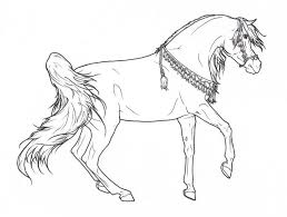Realistic Arabian Horse Coloring Pages Gallery
