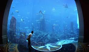 100 Water Discus Hotel Dubai World Unit Signs Deal For Undersea Disc Hotels In