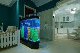 155 wohnzimmer aquarium fotos kostenlose und royalty free