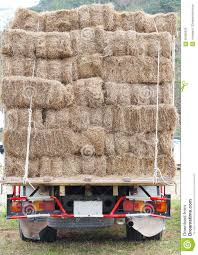 Hay Truck Stock Photo 66405093 - Megapixl Truck Carrying Hay Rolls In Davidsons Lane Moore Creek Near Hay Ggcadc Flickr Bale Bed For Sale Sz Gooseneck Cm Beds Parked Loaded With Neatly Stacked Bales Near Cuyama My Truck And The 8 Rx8clubcom On A Country Highway Stock Photo Image Of Horse Ranch Filescott Armas Truckjpg Wikimedia Commons Hits Swan Street Richmond Rail Bridge Long Delays Early Morning Fire Closes 17 Myalgomaca Oversized Load On Chevy Youtube Btriple Trucks Allowed Oxley To Ferry Relief The Land A 89178084 Alamy