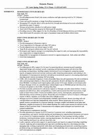 Executive Secretary Resume Old Fashioned Admin Vignette Example Of Assistant