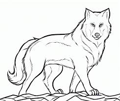 Draw Wolf Coloring Sheet