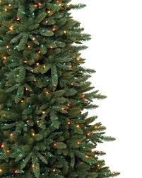 Slim Pre Lit Christmas Trees Canada by Slim Spruce Artificial Christmas Tree Treetopia