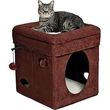 cat in house midwest the original curious cat cube cat house
