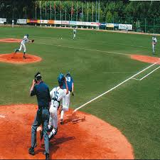 baseball field carpet baseball field carpet suppliers and