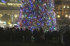 Dillards Christmas Trees by Trashing The Capitol U0027s Christmas Tree Hakai Magazine