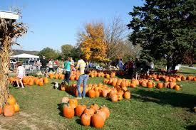 Pumpkin Patches Cincinnati Ohio Area by Mcglasson Farms South Southwest Cincinnati