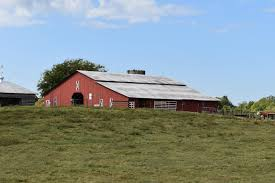 Barn Of The Month - Entertainment - The Dispatch - Lexington, NC 172 Decker Road Thomasville Nc 27360 Mls Id 854946 Prosandconsofbuildinghom36hqpicturesmetal 7093 Texas Boulevard 821787 26 Best Metal Building Images On Pinterest Buildings Awesome Barn With Living Quarters Above Want House 6 Linda Street 844316 Barn Of The Month Eertainment The Dispatch Lexington 1323 Cedar Drive 849172 2035 Dream Home Architecture Cottage 266 Life Beams And Horse Farm For Sale In Johnston County
