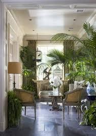 ein tropisches ambiente mit kentia palmen