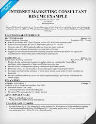 Comments To Marketing Consultant Resume Sample