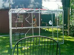 PVC Aviary | Parrot Society Of NW Ohio's Blog Google Image Result For Httpaussiefinchbreedcomphotogallery Parrot Aviary Outdoor Sale Net Avaries Birds Button Quail Aviary A View From My Summerhouse Macaw And Pigeon Youtube Recent Backyard Chickens Amazoncom Omitree Large Pet Cage Cockatiel Conure The Rescue Report The Old Lady Pigeons Retirement Home Building A Flight Or Coz Amazing 26 Backyard Ideas On Rdcny Best Price On Hotel In Siem Reap Reviews