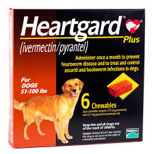 heartgard for cats heartgard acessories medication for dogs cats