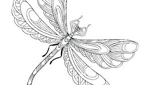 Fly Coloring Page S Butterfly Pages Adults Print