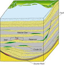 Coal Beds Originate In by Formation Of Coal Oil And Gas Learning Geology