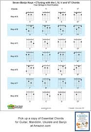 4 String Banjo Chord Chart Standard Tuning C G D A Includes The Major Minor And Seventh Fingerings Fret Board With All Of
