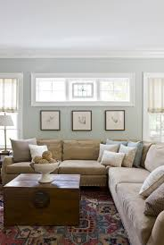 10 Traditional Living Room D 233 Cor Ideas by Paint Color Benjamin Moore Tranquility This Is The Color We Used