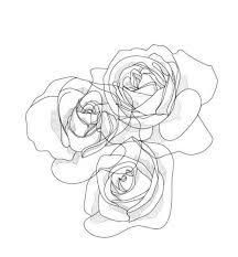 Drawn Line Rose 6