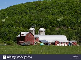 New York State Farm Red Barn With Two Silos Stock Photo, Royalty ... Red Barn Under Storm Clouds Stone Arabia Mohawk Valley Of New And Farms In York State Background 20 Barn Ln For Rent Middletown Ny Trulia Properties Home Autumn Gordon W Dimmig Photography Kuglers Photo Print Red Barn Keene Valley Adirondack Mountains New York 157 Road Cobleskill 12157 201709973 Upstate Reflections Late Afternoon Columbia County On Hoosick St In Troy Im The Only One My Family With Snow Covered Trees Winter Stock Image Dutchess Daniel Contelmo Architects