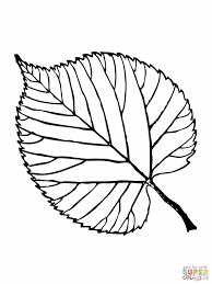 Leaf Coloring Pages Free Archives Best Page Palm For Kids And All New Leaves