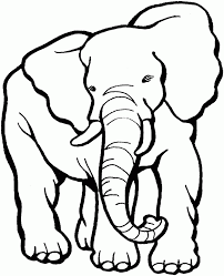 Elephant Coloring Book Kids Pages