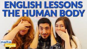 englische vokabeln kostenlos englisch lernen