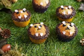 igel muffins