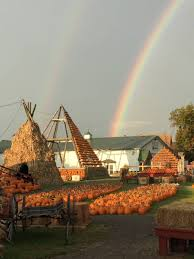 Clarence New York Pumpkin Farm by Great Pumpkin Farm Brings Wny To Main Street Clarence U2013 Discover