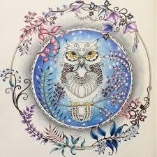 Johanna Basford Owl Enchanted Forest Coloring A Snowy