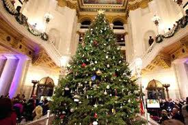 15 Foot Christmas Tree In This File Photo The Tall Stands Rotunda At State Capitol Pa