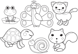 New Cute Animals Colouring Fun