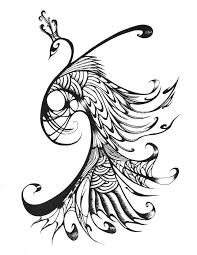 Image Result For Peacock Feather Line Drawing