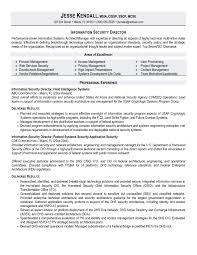 Sample Resume For Director Of Information Technology Valid Homey Security Examples Creative Inspiration
