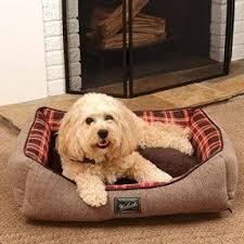 plaid dog bed foter