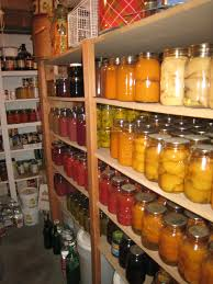 Food Storage Organization