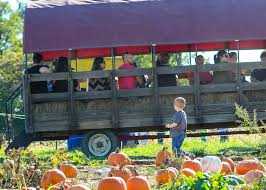 Pumpkin Patches In Milton Wv by Triple B Farms Country Market Berry Picking Family Playground