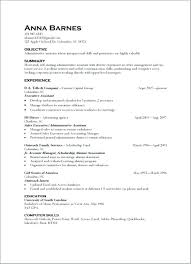 Sample Resume Computer Skills Section Examples And Abilities Example