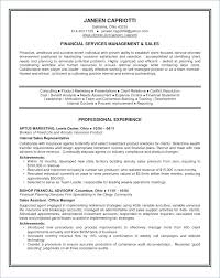 Summary For Resume Examples Lovely Sample Information Professional Example