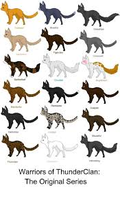 cat names best 25 warrior cat names ideas on warriors erin