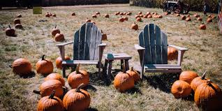 Pumpkin Patch Sf by 9 Fall Sf Date Ideas To Make U0027em Swoon