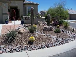 Backyard Decorating Ideas Pinterest by Best 25 Desert Backyard Ideas On Pinterest Desert Landscaping