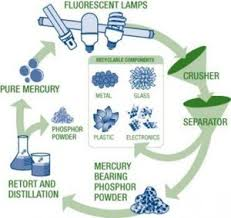 compact fluorescent light bulbs cfl erie county recycles