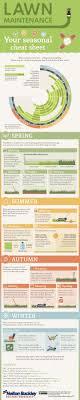 10 best lawn care images on Pinterest