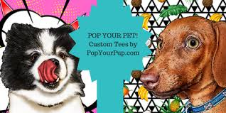 Pampered Pets Bed And Biscuit by Pampered Pets Gift Guide Fashion Beyond Forty