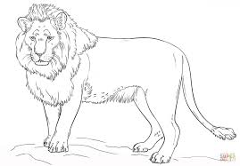 Coloring PagesColoring Pages Lions Gorgeous Lion Sheet Page