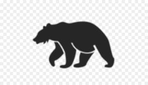 American Black Bear T Shirt Bull Grizzly