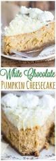 Pumpkin Cheesecake Gingersnap Crust Bon Appetit by White Chocolate Pumpkin Cheesecake With Gingersnap Crust