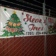 Stanly Lane Pumpkin Patch Napa 2015 by Steves Trees 19 Photos U0026 12 Reviews Christmas Trees 575