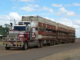 100 Cattle Truck Never Overtake A With Your Windows Down