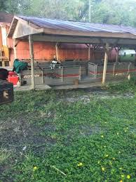 The Garden Shed Homosassa Fl by Homosassa River Retreat Updated 2017 Hotel Reviews Fl